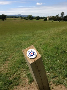 On the RAF Walk, looking towards Croome Court, June 2013